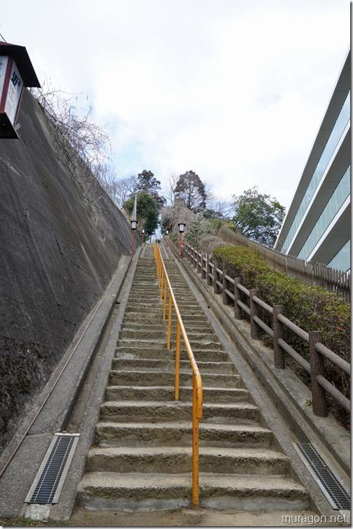 仙台総鎮守 愛宕神社 階段