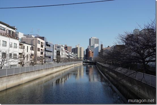 仙台堀川(木更木橋)