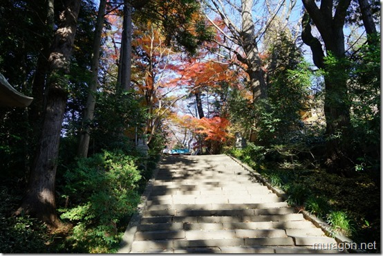 青葉神社 石段