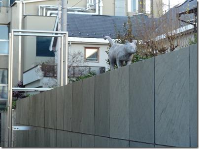 塀の上の猫像