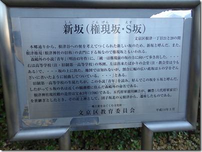 新坂(権現坂・S坂)