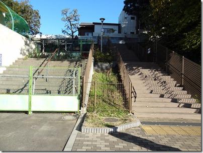 初音の森の階段