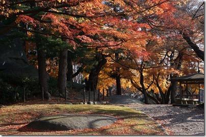 桜山神社の裏側