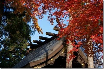 桜山神社の本殿