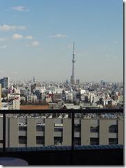 窓から見えてるスカイツリー