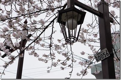 豊島区外灯