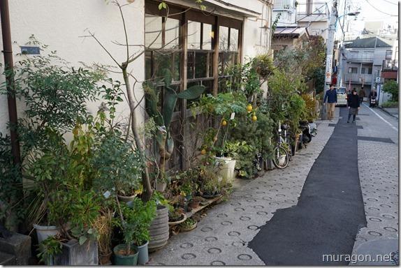小路苑 花屋
