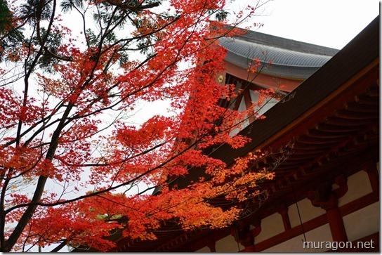 毛越寺の紅葉=美しい浄土庭園と紅葉=