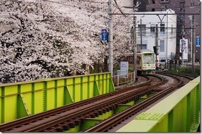 都電 桜 鉄橋 高戸橋