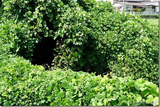 1号隧道出口