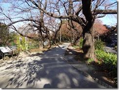 市ヶ谷方面につながる土塁上の遊歩道
