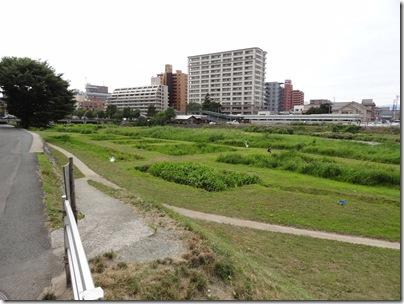 中津川 緑地