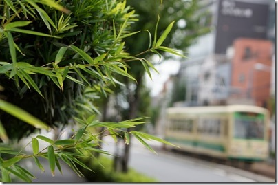 笹の葉と緑の7000形車両