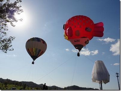 体験搭乗熱気球