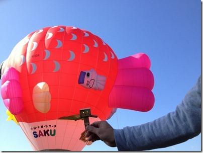 ダンボーと熱気球