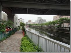 目黒川の遊歩道