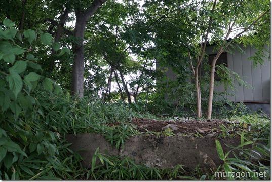 狐森稲荷神社(敵見ヶ森稲荷神社)
