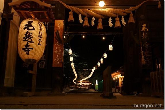 元朝詣り・浄土庭園ライトアップ
